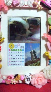 diary110601.jpg