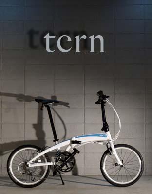 tern5