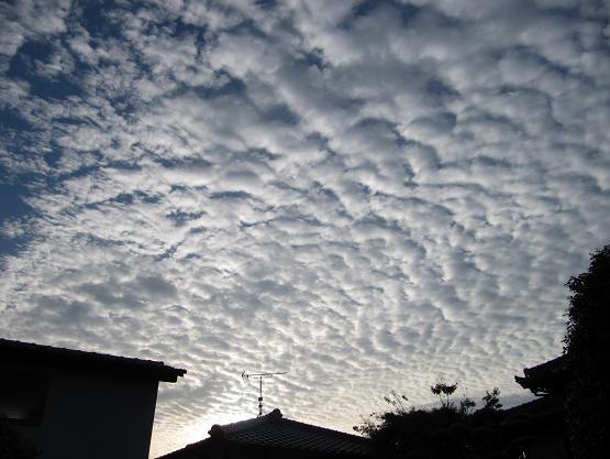 朝の雲 2