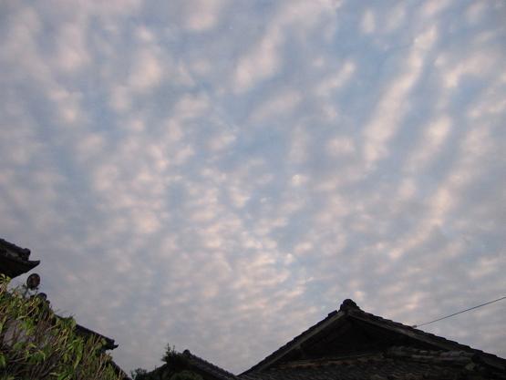 夕方の雲 1