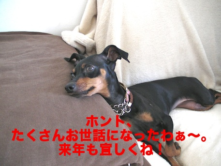 20111231-1.png