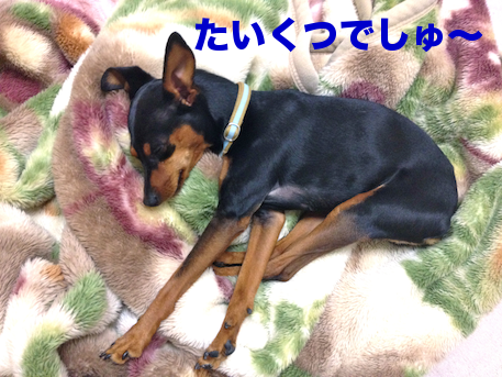 20120317-1.png