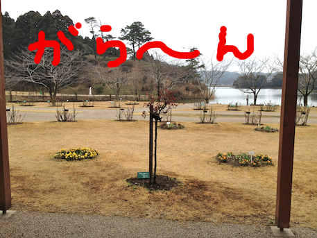 20120326.png