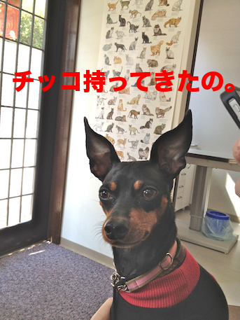20120401.png