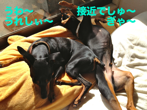 20120413-1.png