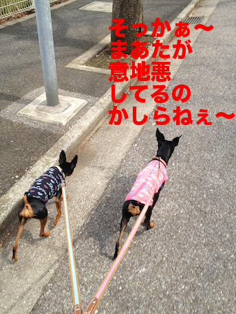 20120418-2.png