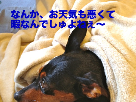 20120505-1.png