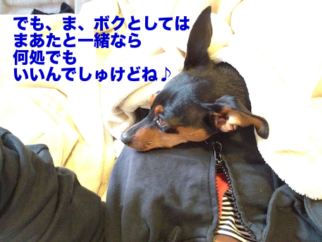 20120505-2.png