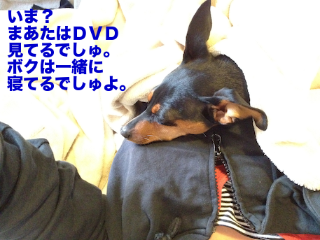 20120505-3.png
