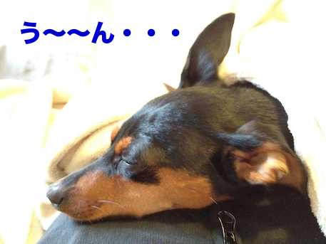 20120505.png