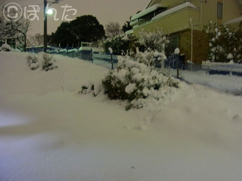 2014雪_3