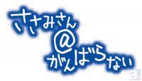 1304_sasami.jpg