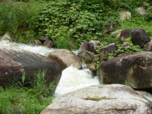 キャンプ 鳴滝3