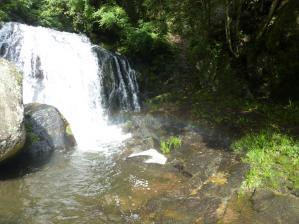 キャンプ 鳴滝29