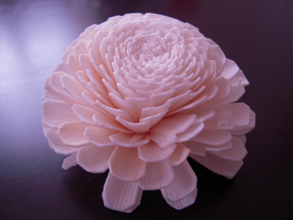 白いお花☆