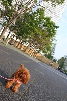 ここあ@横浜美術館