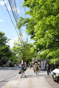 お散歩@軽井沢