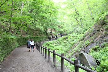 お散歩@白糸の滝