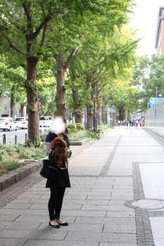 ここあ&ママ@銀杏並木