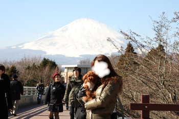 ここあ@富士山