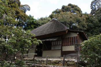 高台寺・傘の屋根