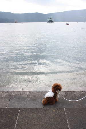 芦ノ湖でしゅ