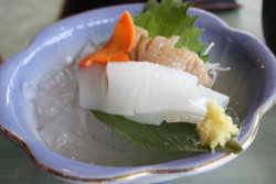 白イカのお刺身