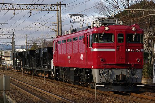 IMGP7523.jpg
