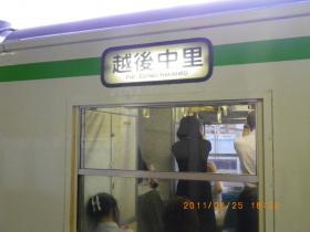 IMGP4989.jpg