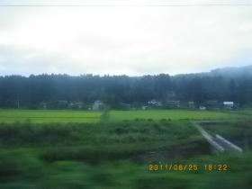 IMGP4998.jpg