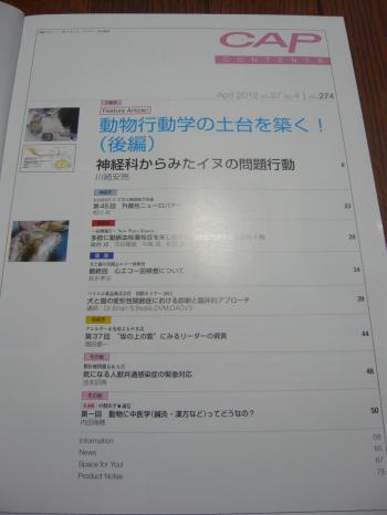 024_convert_20120411230206.jpg