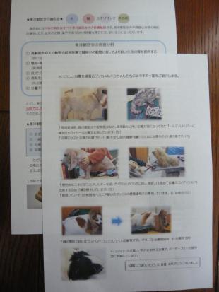 iroiro+042_convert_20120226170426.jpg