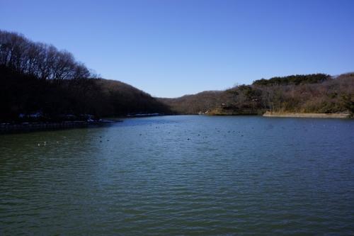 1八丁湖 (1200x800)