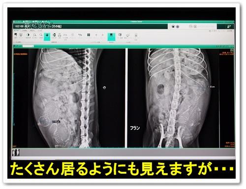 20131129_022.jpg