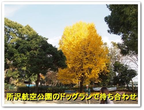 20131204_010.jpg