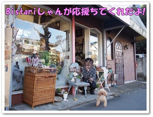 20131205_007_01.jpg