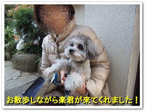 20131205_014_01.jpg