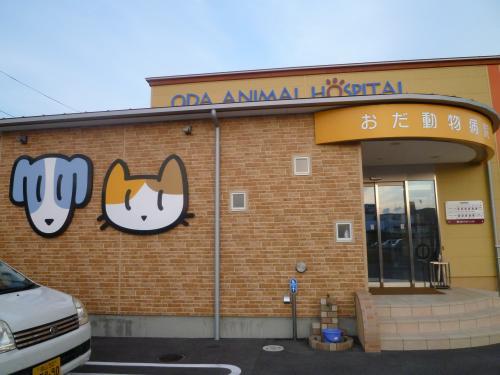おだ動物病院2