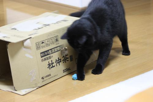 箱とボール 4