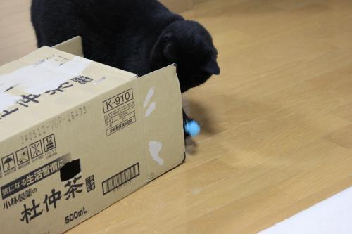 箱とボール 3