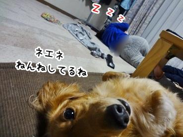 kinako1037.jpg