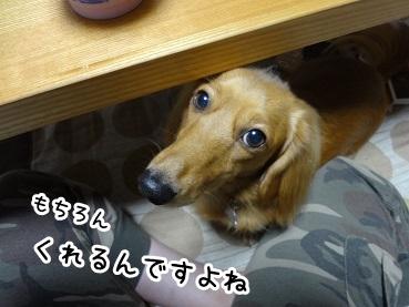 kinako1043.jpg