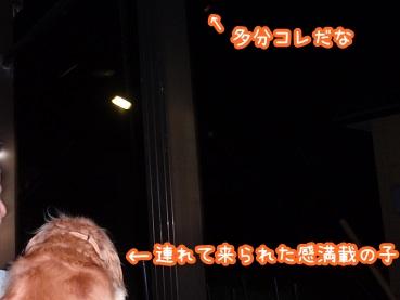 kinako1067.jpg