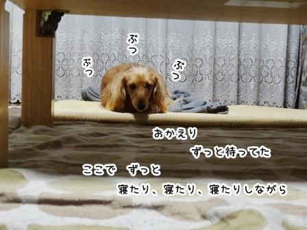kinako915.jpg