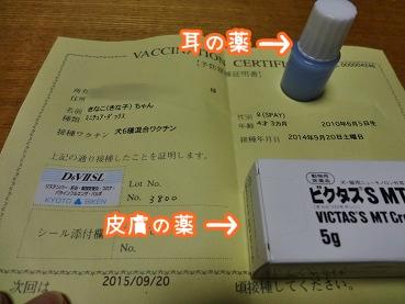 kinako943.jpg