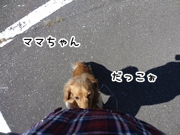 kinako946.jpg