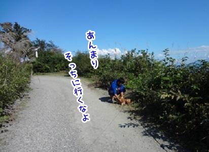 kinako959.jpg