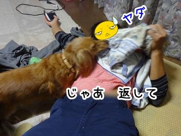 kinako977.jpg