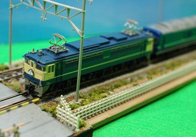 グリーンの場合 EF65_R