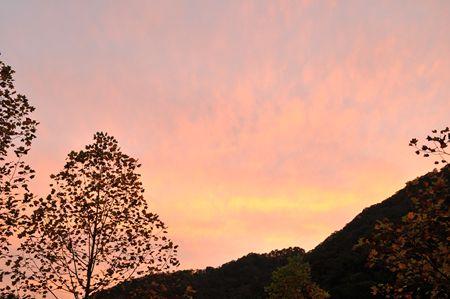 朝焼け_R